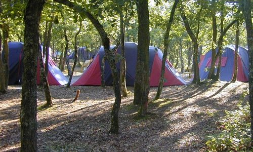 buthiers_camping_ile_de_buthiers